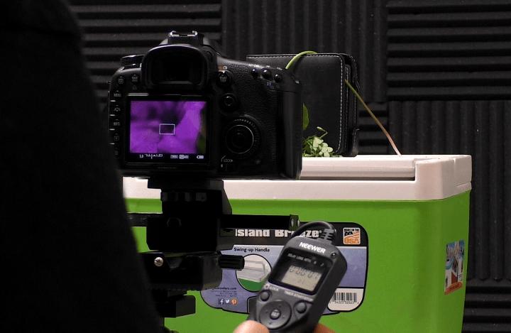 Nello scatto con il Live View attivato, il meccanismo reflex è disattivato e si riducono le vibrazioni